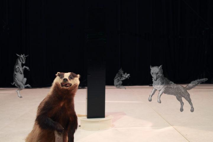 (c) De dieren / Oshin Albrecht