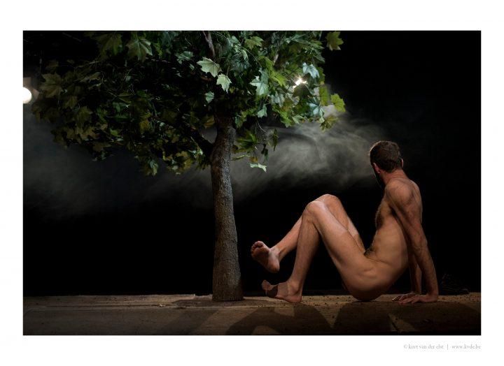 (c) Kurt Van der Elst